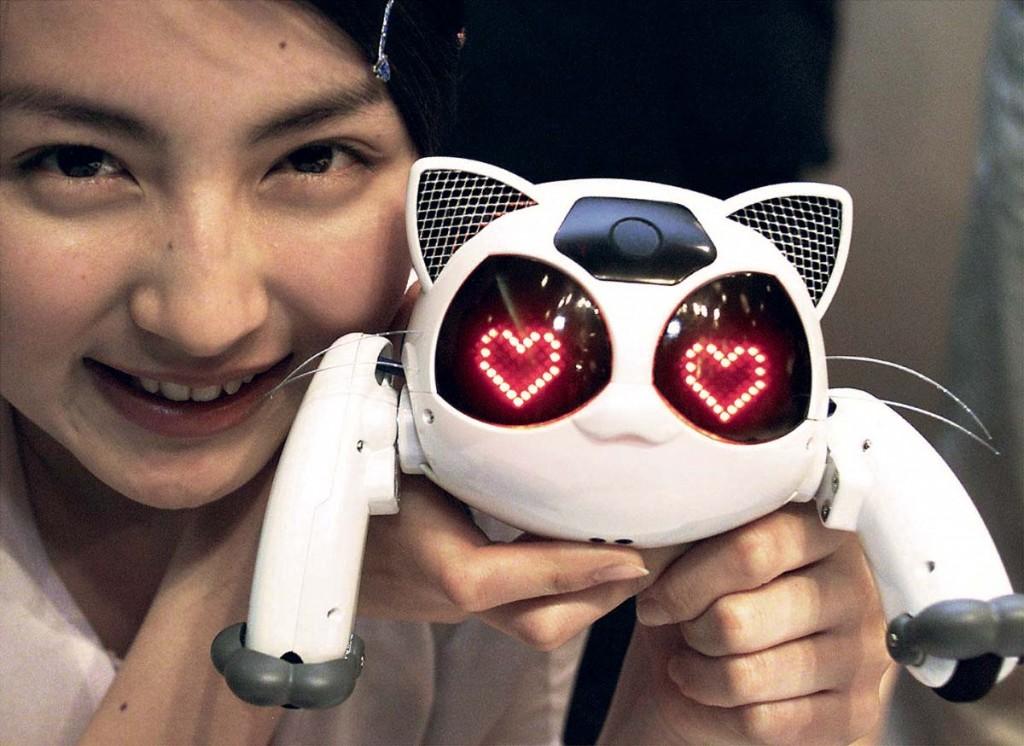 Купить робота в Интернет магазине стало просто! Магазин роботов