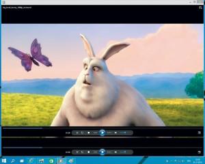 Windows Media Player MKV