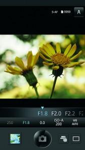 OLYMPUS Image Share включает в себя несколько фильтров, улучшающих снимки.