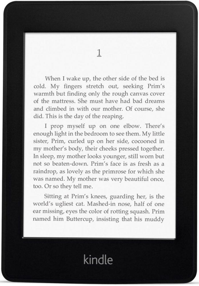 Делаем снимок экрана на электронной книге