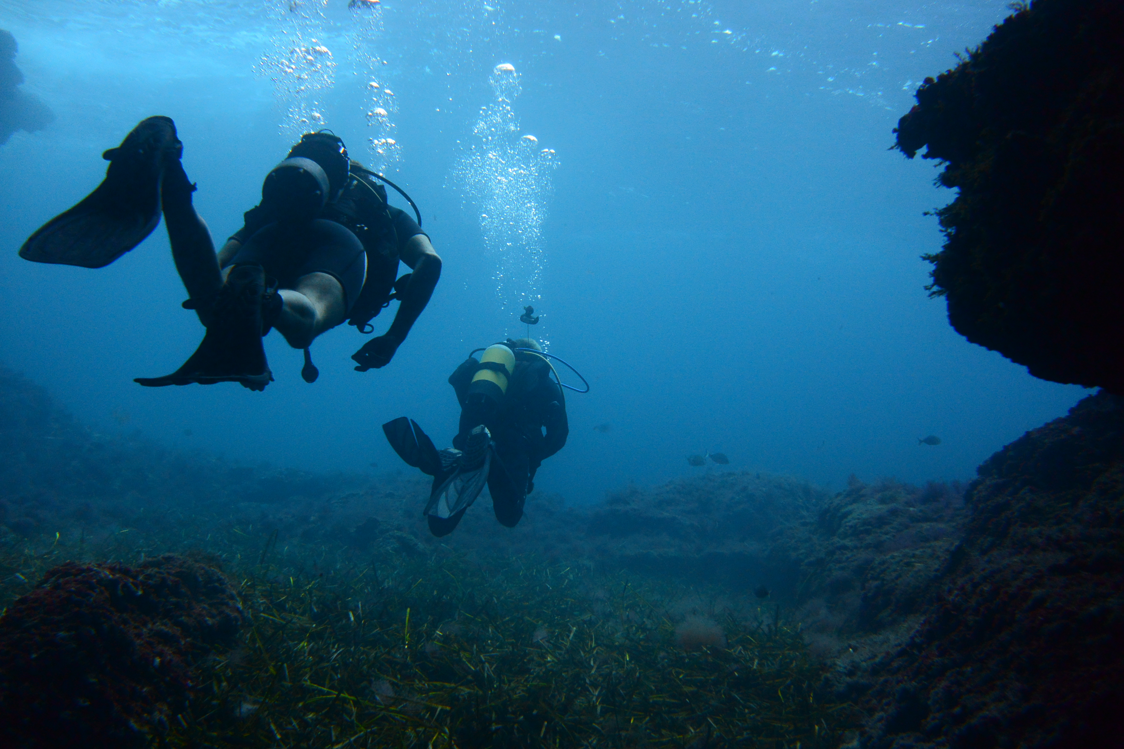 Защищенные камеры: Идеальны для подводной съемки. Тестовый снимок с Nikon 1 AW1.