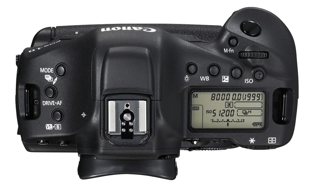 Canon EOS 1D X Mark II: Перед горячим башмаком у камеры находится GPS-модуль.