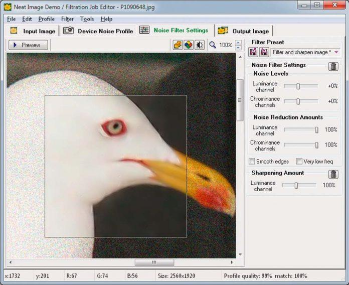 Как убрать шумы с фотографии с помощью специальных программ