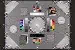 Тест фотокамеры Nikon D5600: добротная зеркалка среднего класса