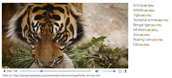 Google создала технологию, идентифицирующую содержимое видеороликов