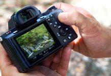 рейтинг любительских камер