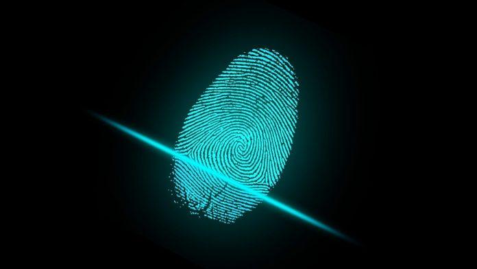 Началось массовое производство наэкранных сканеров отпечатков пальцев