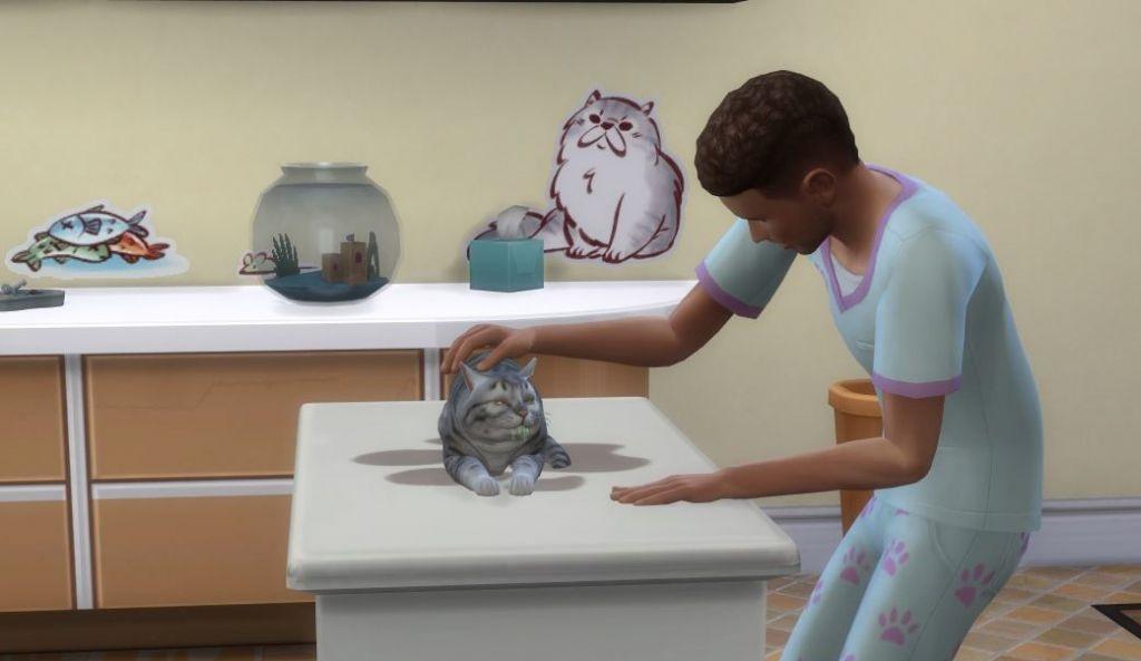 Ветеринарная клиника в дополнении «The Sims 4: Кошки и собаки»