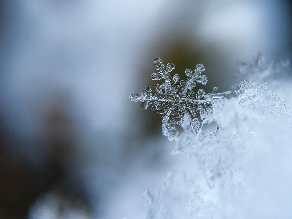 Фотографируем снежинки: как сделать превосходные снимки