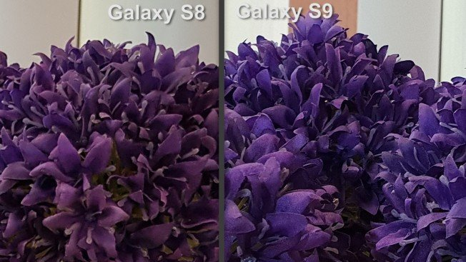 Высокая детализация изображений, полученных S9, заметна даже невооруженным взглядом