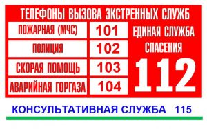 Телефоны экстренных служб в РФ