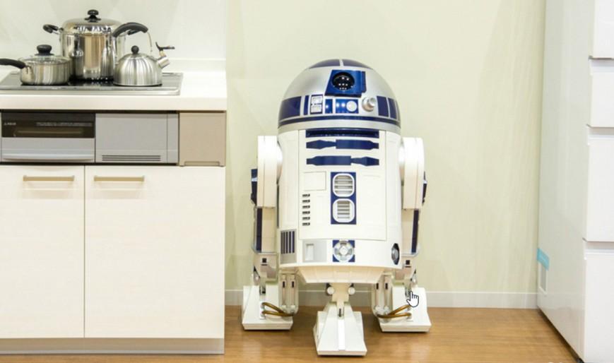 А вы бы хотели такого домашнего робота?