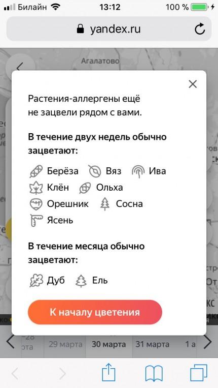 Яндекс поможет аллергикам