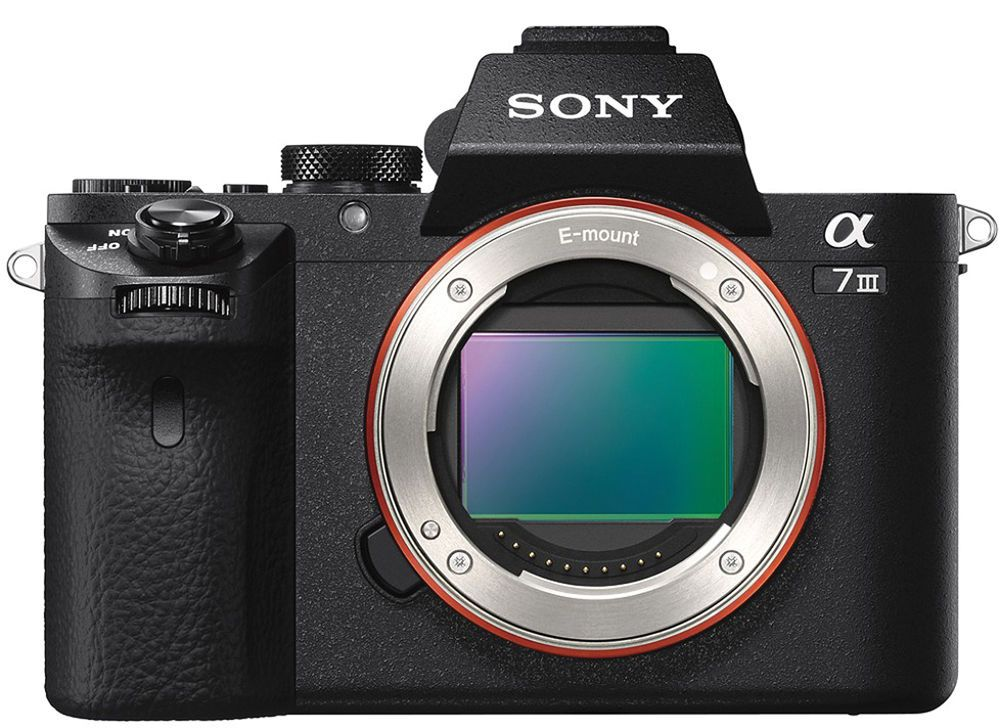Тестируем камеру Sony Alpha 7 III: беззеркалки не сдаются