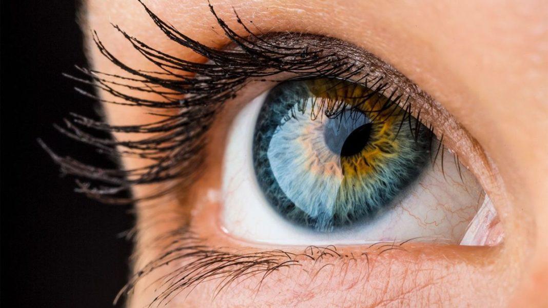 Прорыв в медицине: роговицу глаза будут печатать на 3D-принтере