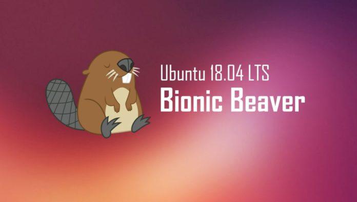 Пока, Windows: первые шаги в Ubuntu 18.04