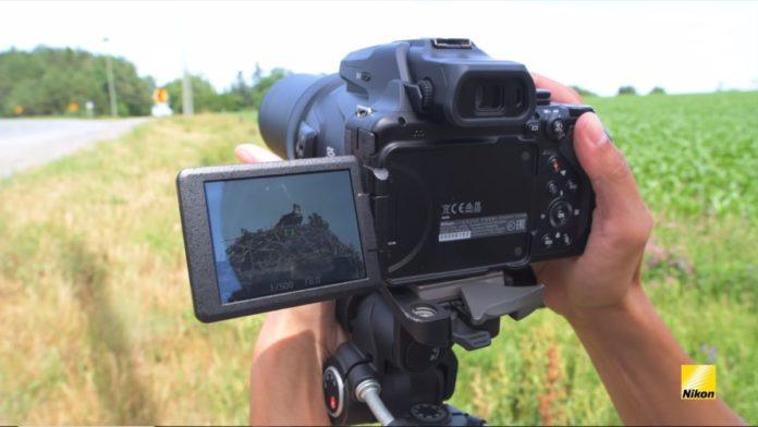 Новая камера от Nikon выдает рекордное 125-кратное увеличение