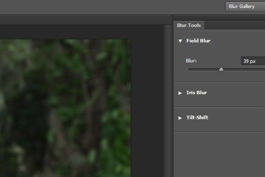 Как сделать размытие в Photoshop: эффект профессионального фото