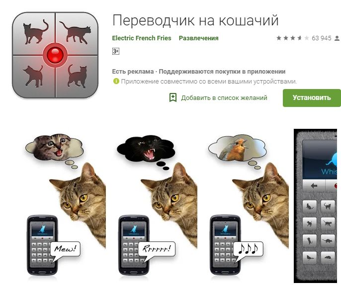 Хит-парад самых идиотских приложений для Android