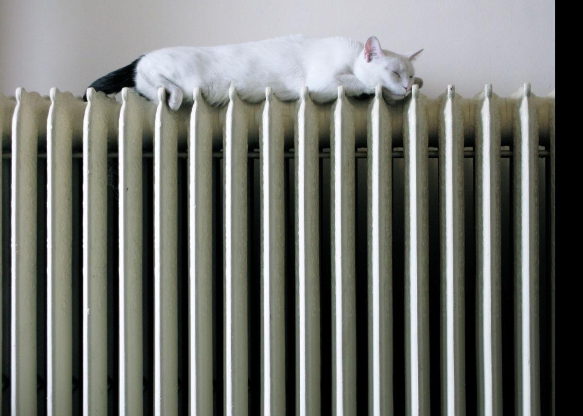 Увлажнители воздуха: рейтинг лучших моделей 2018 для российских квартир