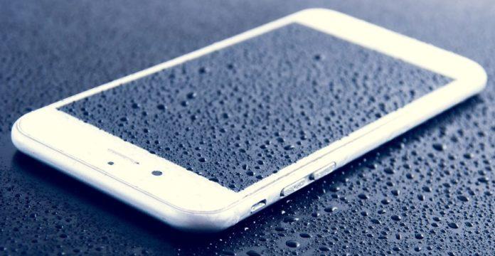 Эксперты развеяли популярный миф о смартфонах и рисе