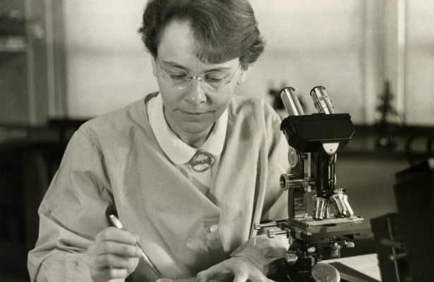 Тест: какие из этих изобретений сделаны женщинами?
