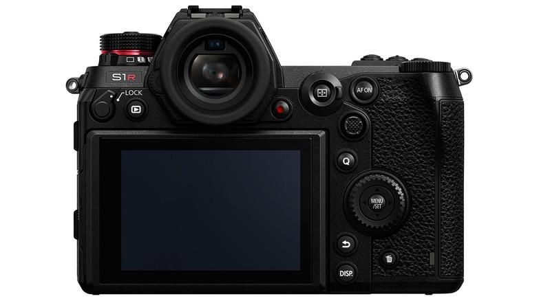 Как снять фото с разрешением 187 Мп:тестируем DSLM-камеру Panasonic Lumix S1R