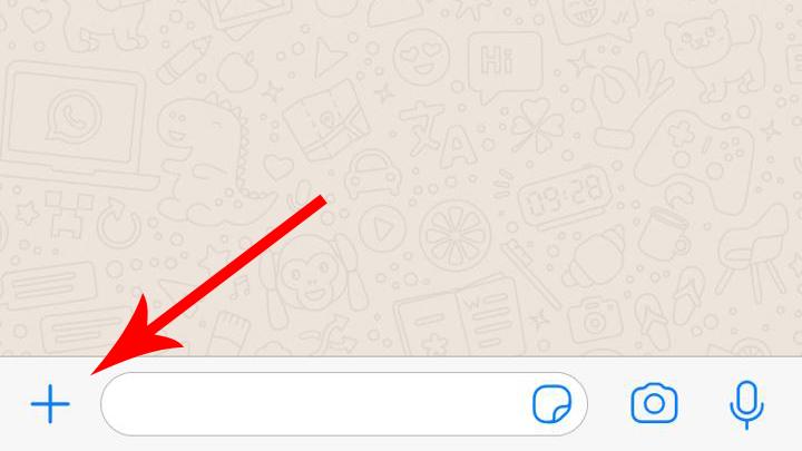 Лайфхак для WhatsApp: как делиться своими координатами в реальном времени?
