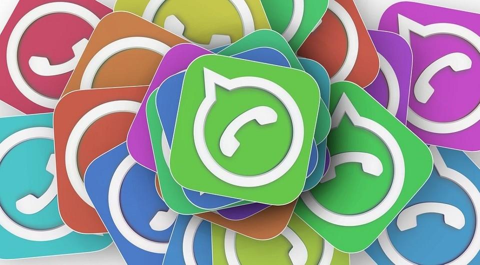 WhatsApp: как официально стать бета-тестером