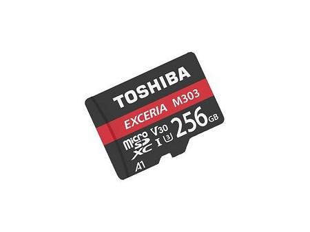 Toshiba Exceria M303 64GB (THN-M303R0640E2)