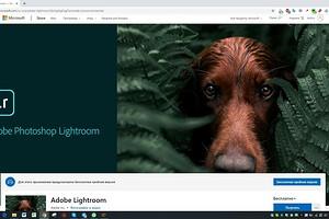 Adobe Lightroom для Windows 10 теперь можно установить и запустить без сервиса Creative Cloud