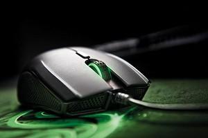 Как выбрать мышь для компьютера в 2020 году: подробный гайд