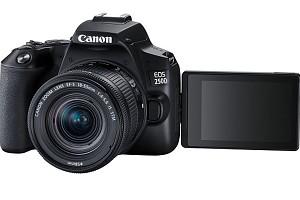 Тест DSLR-камеры Canon EOS 250D:все лучшее, плюс UHD