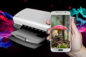 Как подключить смартфон на Android к принтеру и распечатать фотографии?