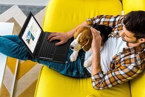 Лучшие ноутбуки 2020: для студента, менеджера, дизайнера и не только