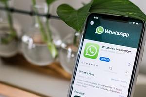 Как создать групповой видеочат в WhatsApp