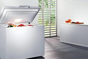 Топ-7: лучшие морозильные лари для дома