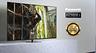 Panasonic презентовала «голливудский» OLED-телевизор HZ980
