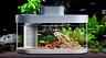 Xiaomi выпустила умный домашний аквариум