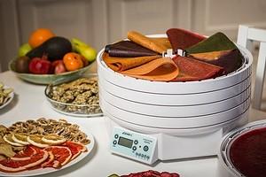 Как выбрать сушилку для овощей, фруктов и грибов (плюс рекомендации моделей)