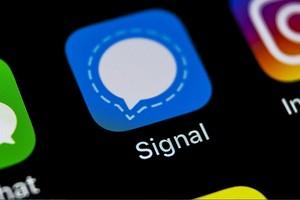 Signal: как создать ссылку и QR-код для группы