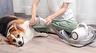 Xiaomi придумала триммер для домашних животных со встроенным пылесосом