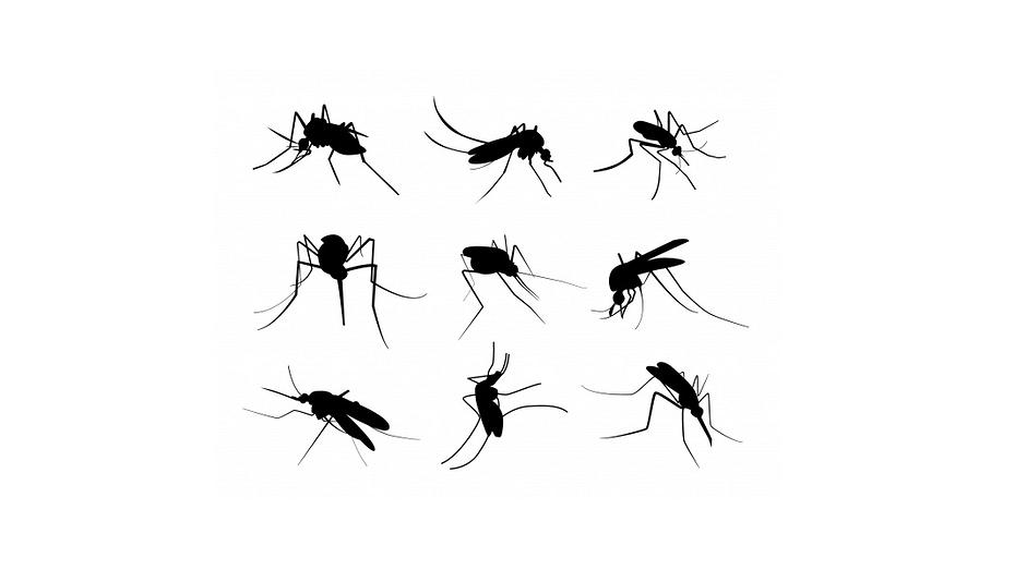 Российский ученый изобрел лазерную пушку с искусственным интеллектом для убийства комаров