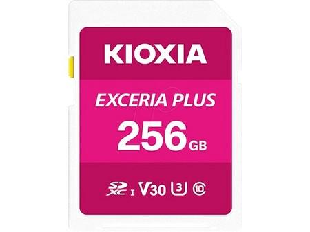 Kioxia Exceria Plus 256GB (LNPL1M256GG4)