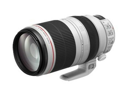 Canon EF 100-400 mm f/4,5-5,6L IS II USM