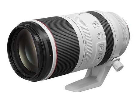 Canon RF 100-500 mm F4,5-7,1 L IS USM
