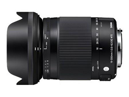 Sigma 18–300 mm f/3,5–6,3 DC Makro OS HSM (C)