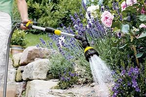 Насос вместо лейки: как настроить полив дождевой водой на даче