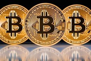 Bitcoin продолжает дорожать — ценник выше $41 500