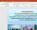 Руководство по работе с приложением PowerPoint для создания презентации
